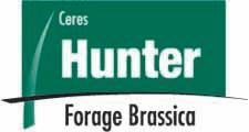 Hunter Forage Brassica