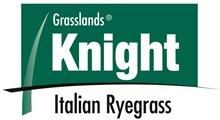 Knight Short term/Italian Ryegrass