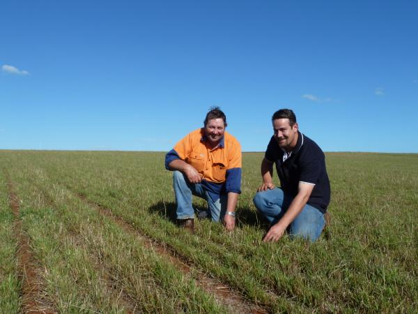 Phillip Hamilton (left) and Roberts Agro Tim Walker in a Knight pasture