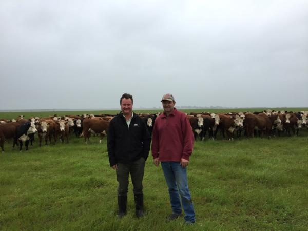 Simon Hunt and Glenn Bowman_Knight Itallian Ryegrass pasture