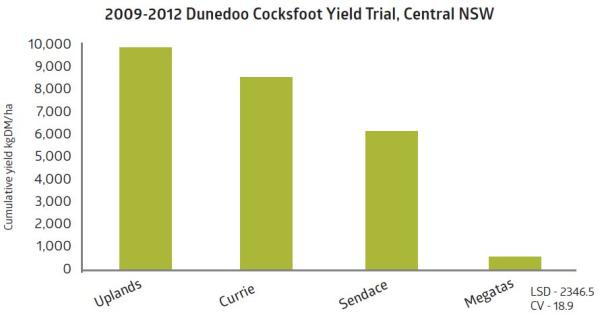 2009 2012 Dunedoo Cocksfoot Yield Trial Central NSW