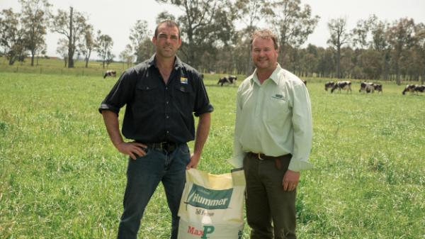 Luke Nicholls and agronomist Simon Hunt in a Hummer tall fescue pasture