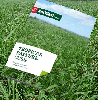 AusWest Tropical Pasture Guide 2020