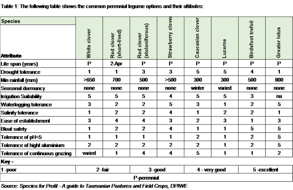 Common perennial legume options_Table