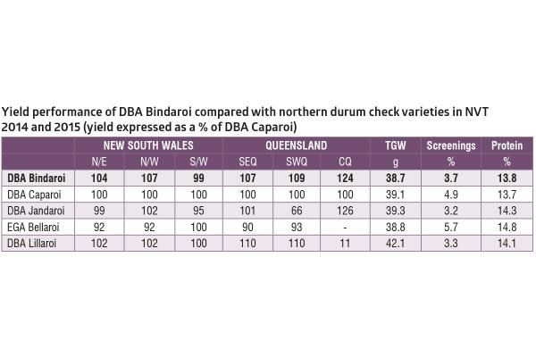 DBA Bindaroi wheat | AusWest & Stephen Pasture Seeds